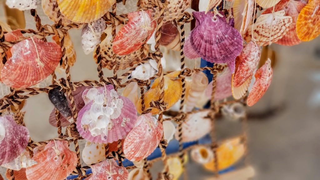 Deniz kabuğundan yapılmış hediyelikler